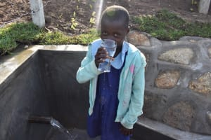 The Water Project: Sundulo B Community, Luvisia Spring -  Finally Drinking Clean Water