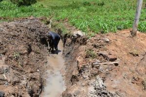 The Water Project: Shianda Community, Govet Lumbasi Spring -  Drainage