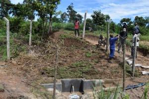 The Water Project: Shianda Community, Govet Lumbasi Spring -  Fencing