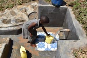 The Water Project: Shianda Community, Govet Lumbasi Spring -  Fetching Water