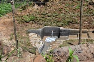 The Water Project: Shianda Community, Govet Lumbasi Spring -  Govet Lumbasi Spring