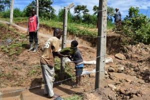 The Water Project: Shianda Community, Govet Lumbasi Spring -  Grass Relocation