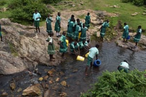 The Water Project: Mutoto Primary School -  Fetching Water From Stream