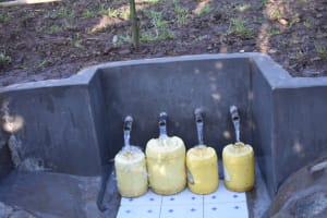 The Water Project: Eshimuli Community, Mbayi Spring -  Clean Water Flowing