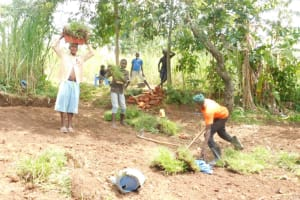 The Water Project: Eshimuli Community, Mbayi Spring -  Planting Of Grass