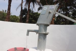 The Water Project: DEC Kitonki Primary School -  Clean Water Flowing