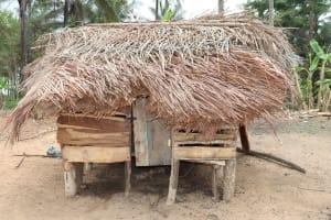The Water Project: Kamasondo, Feradugu Village -  Animal House