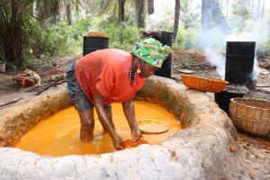 The Water Project: Kamasondo, Feradugu Village -  Woman Processing Palm Oil