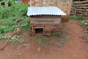 The Water Project: Isagara Primary School -  Animal House