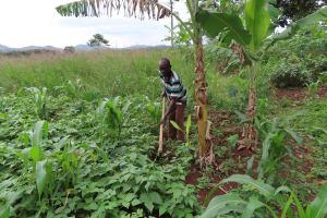 The Water Project: Isagara Primary School -  Gardening