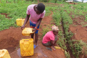 The Water Project: Isagara Primary School -  People Collecting Water At Stream