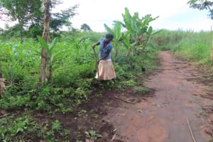 The Water Project: Kyamaiso Community -  Gardening