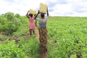 The Water Project: Rwenkole Community -  People Carrying Water
