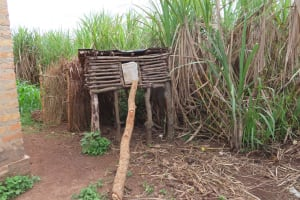The Water Project: Kyakaitera Community -  Chicken House