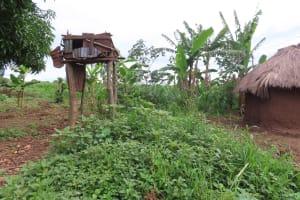 The Water Project: Kyakaitera Community -  Chicken Pen
