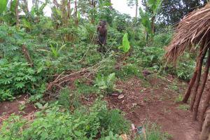 The Water Project: Kyakaitera Community -  Gardening