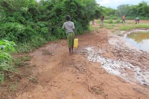 The Water Project: Kyakaitera Kyempisi Community -  Collecting Water