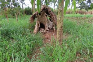 The Water Project: Kyakaitera Kyempisi Community -  Latrines