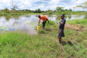 The Water Project: Kikingura Kidwaro Community -  Open Water Source