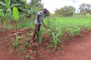 The Water Project: Kiryamasasa Community -  Digging