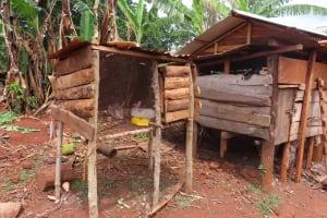 The Water Project: Kiryamasasa Community -  Animal Pens