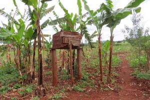 The Water Project: Kiryamasasa Community -  Chicken House
