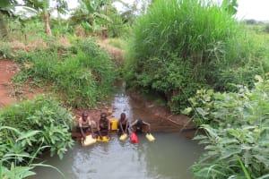 The Water Project: Kiryamasasa Community -  Collecting Water