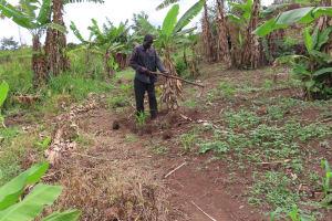 The Water Project: Kiryamasasa Community -  Gardening
