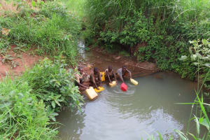 The Water Project: Kiryamasasa Community -  Water To Carry Home