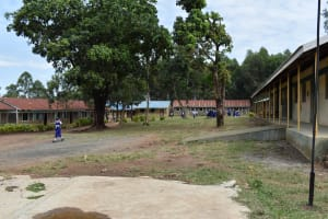 The Water Project: Shamberere Primary School -  School Compound
