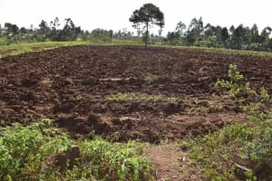 The Water Project: Iyala Community, Iyala Spring -  Land Tilled For Farming