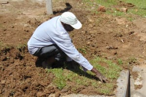The Water Project: Luyeshe North Community, Reuben Endeche Spring -  Grass Planting