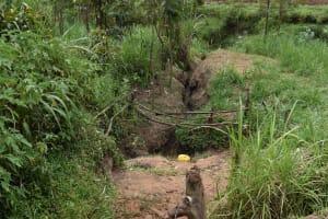 The Water Project: Mungakha Community, Mwilima Spring -  Unprotected Mwilima Spring