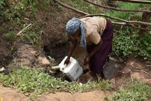 The Water Project: Mungakha Community, Mwilima Spring -  Fetching Water
