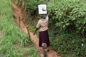 The Water Project: Mungakha Community, Mwilima Spring -  Elina Carrying Water
