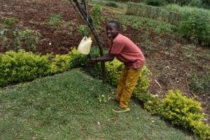 The Water Project: Mungakha Community, Mwilima Spring -  Washing Hands