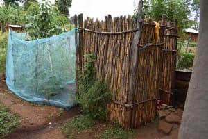The Water Project: Mungakha Community, Mwilima Spring -  Bathing Shelter Of Corn Stalks