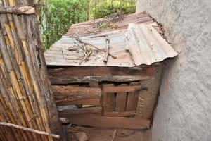 The Water Project: Mungakha Community, Mwilima Spring -  Dogs Kennel