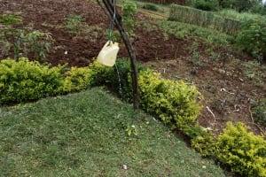 The Water Project: Mungakha Community, Mwilima Spring -  Leaky Tin