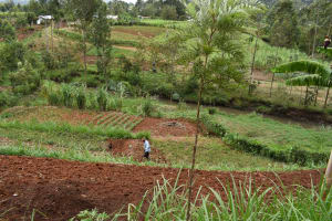 The Water Project: Mungakha Community, Mwilima Spring -  Mr Alum At His Farm