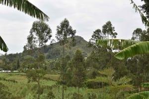 The Water Project: Mungakha Community, Mwilima Spring -  Landscape