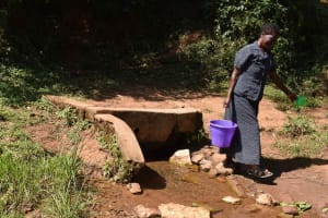 The Water Project: Muhoni Community, Kekongo Forest Spring -  Ann Fetching Water