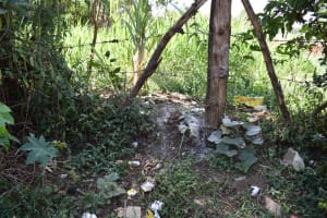 The Water Project: Muhoni Community, Kekongo Forest Spring -  Garbage Pit
