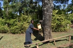 The Water Project: Muhoni Community, Kekongo Forest Spring -  Handwashing