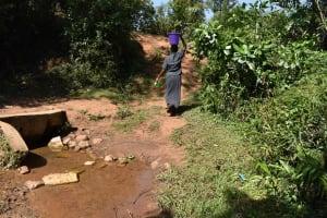 The Water Project: Muhoni Community, Kekongo Forest Spring -  Long Walk Back