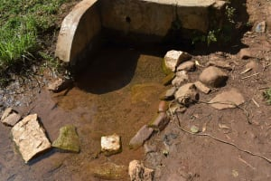The Water Project: Muhoni Community, Kekongo Forest Spring -  Spring