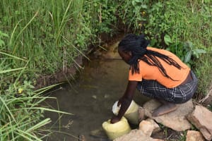 The Water Project: Chombeli Community, Ernest Kuta Spring -  Collecting Water