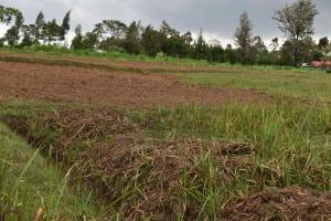 The Water Project: Chombeli Community, Ernest Kuta Spring -  Community Land