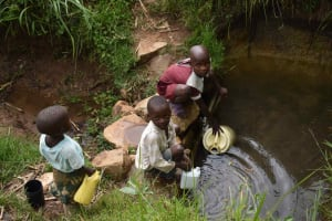 The Water Project: Chombeli Community, Ernest Kuta Spring -  Diana And Siblings Collect Water
