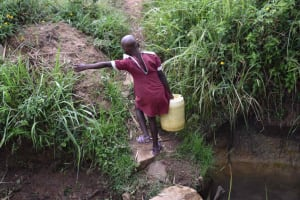 The Water Project: Chombeli Community, Ernest Kuta Spring -  Diana Carrying Water